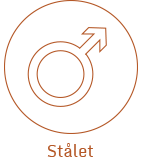 SKGS-Startsida-Stalet