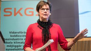 Anna Holmberg, energidirektör Skogsindustrierna